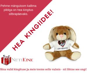 Hea kingituse sõbrale leiad NetiKink e-poest